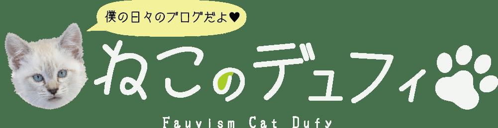猫のデュフィ – 猫の成長日記